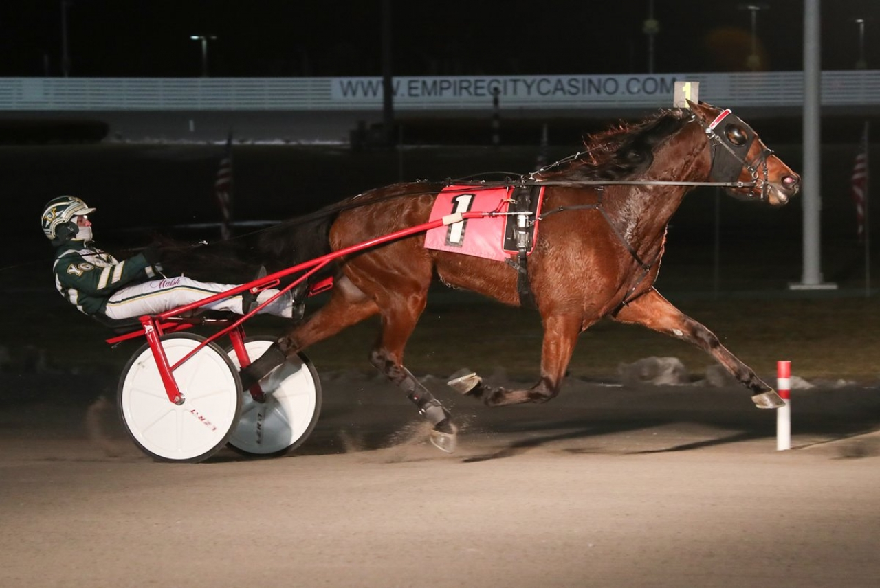 Whether Or Not och Yannick Gingras vid en tidigare seger. Foto: Mike Lizzi