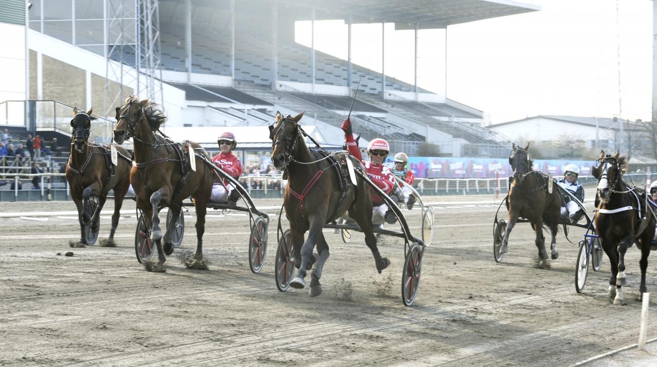 Day Or Night In vann uttagningsloppet till Olympiatavet. Foto Jörgen Tufvesson/ALN