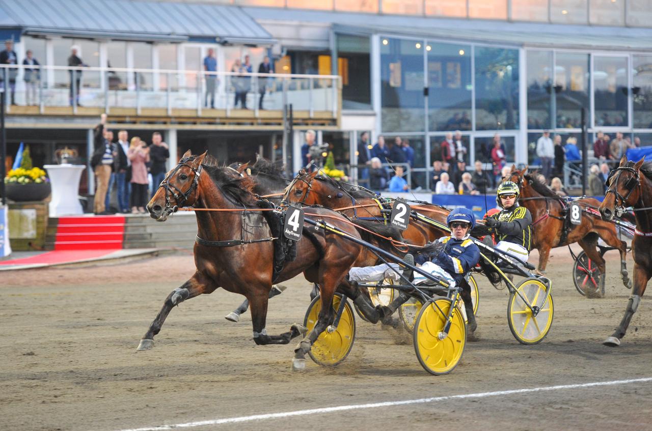 Evaluate får en ny kusk i Sprintermästaren nästa torsdag. Foto: Simon Hagen