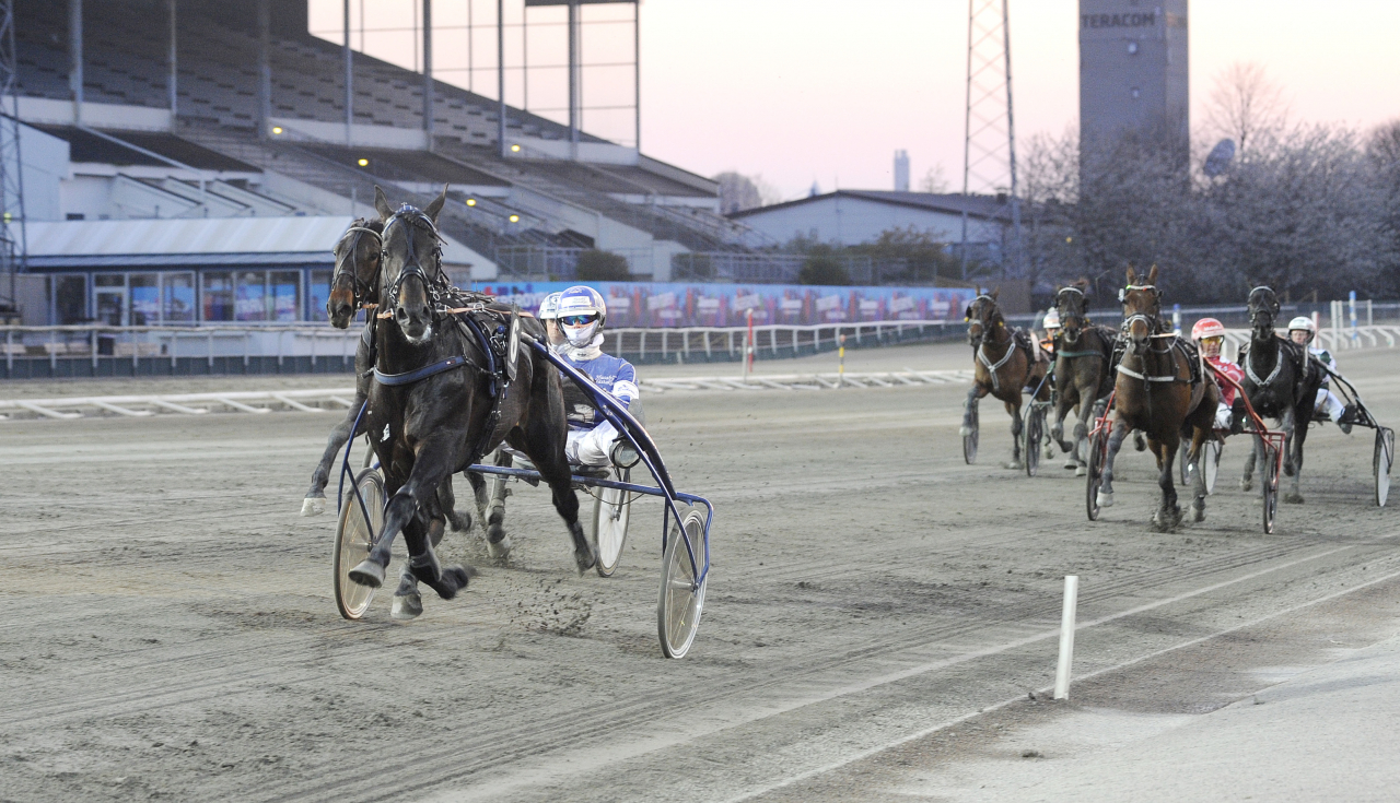 Hollandsfödde Gento hade uppvisning för Kim Eriksson och behövde inte plocka fram hela sitt register för att vinna. Foto: Jörgen Tufvesson/ALN