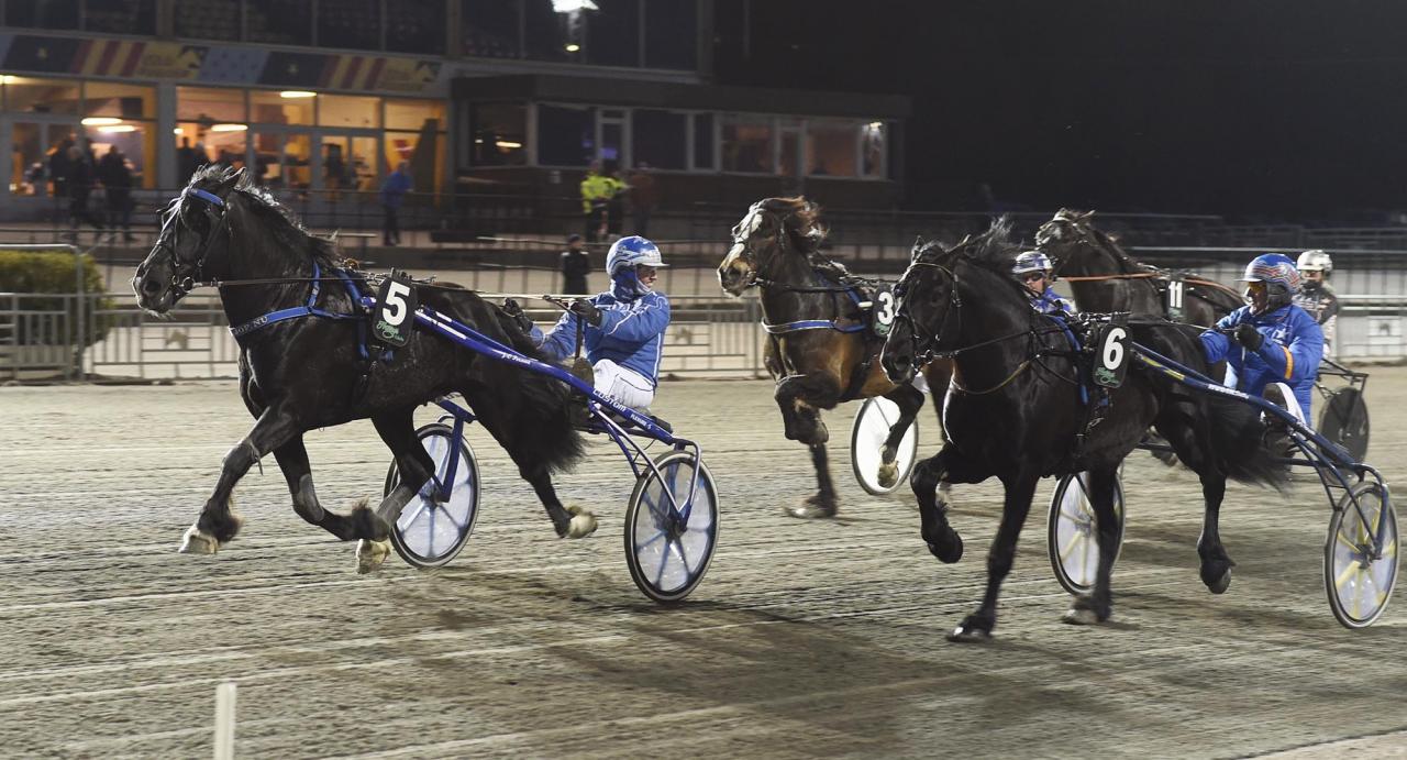 Jan-Olov Persson-tränade Guli Tor har tre raka segrar på fem försök med Rikard N Skoglund. Foto Christer Norin/ALN