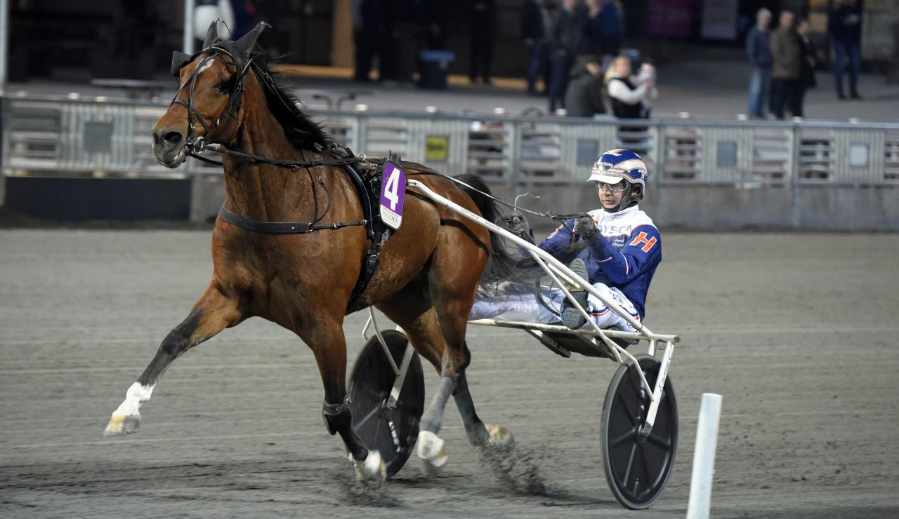 Heavy Sound blir den nionde hästen att bjudas in till Elitloppet. Foto: Martin Langels/ALN
