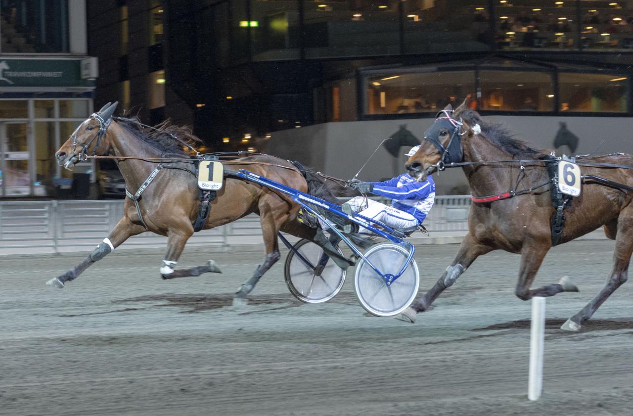 Hevin Boko vann Avelsföreningens Jubileumslöpning. Foto: Tommy Andersson