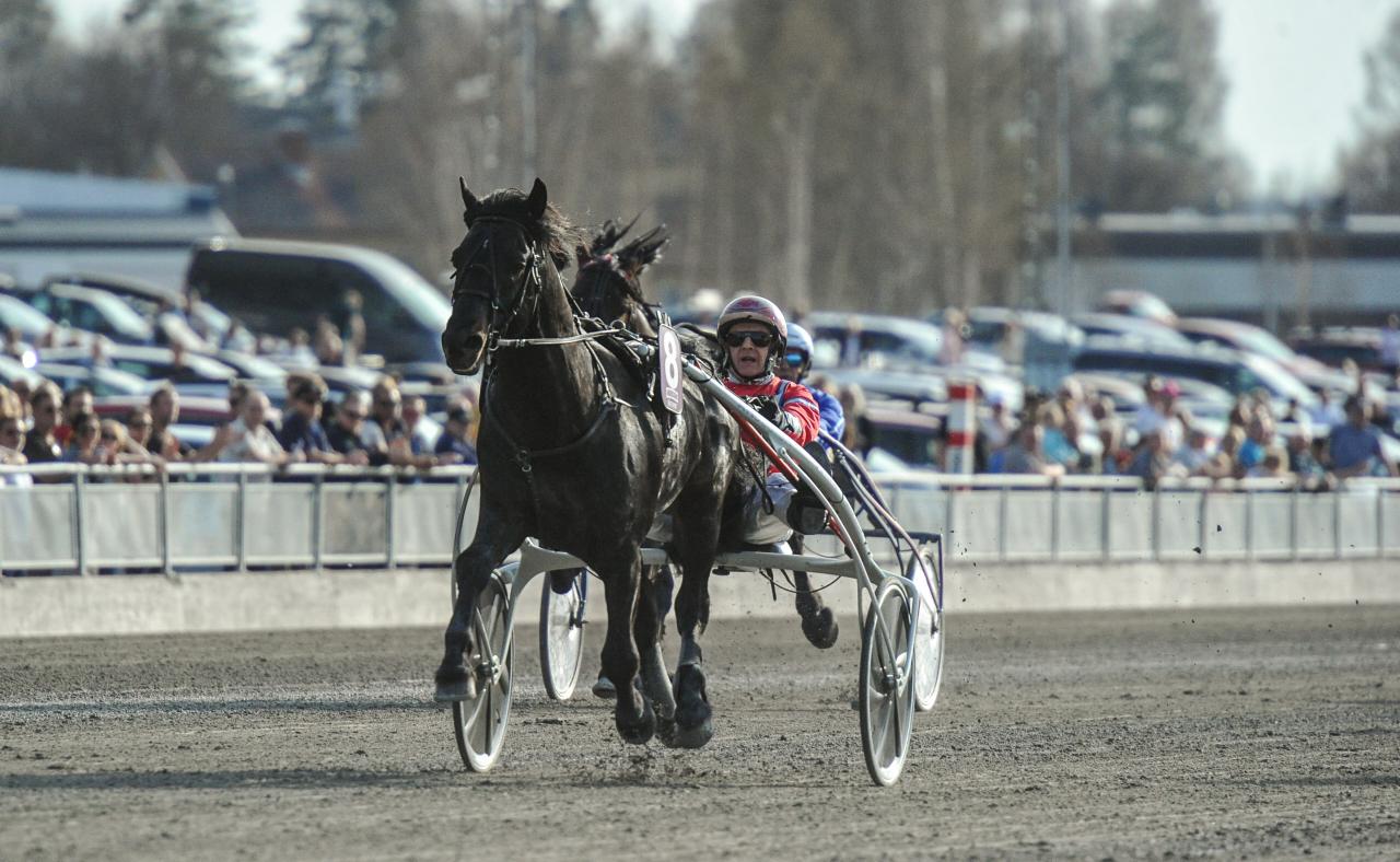 Det blev en lätt seger för storfavoriten Månprinsen A.M. Foto: Simon Hagen