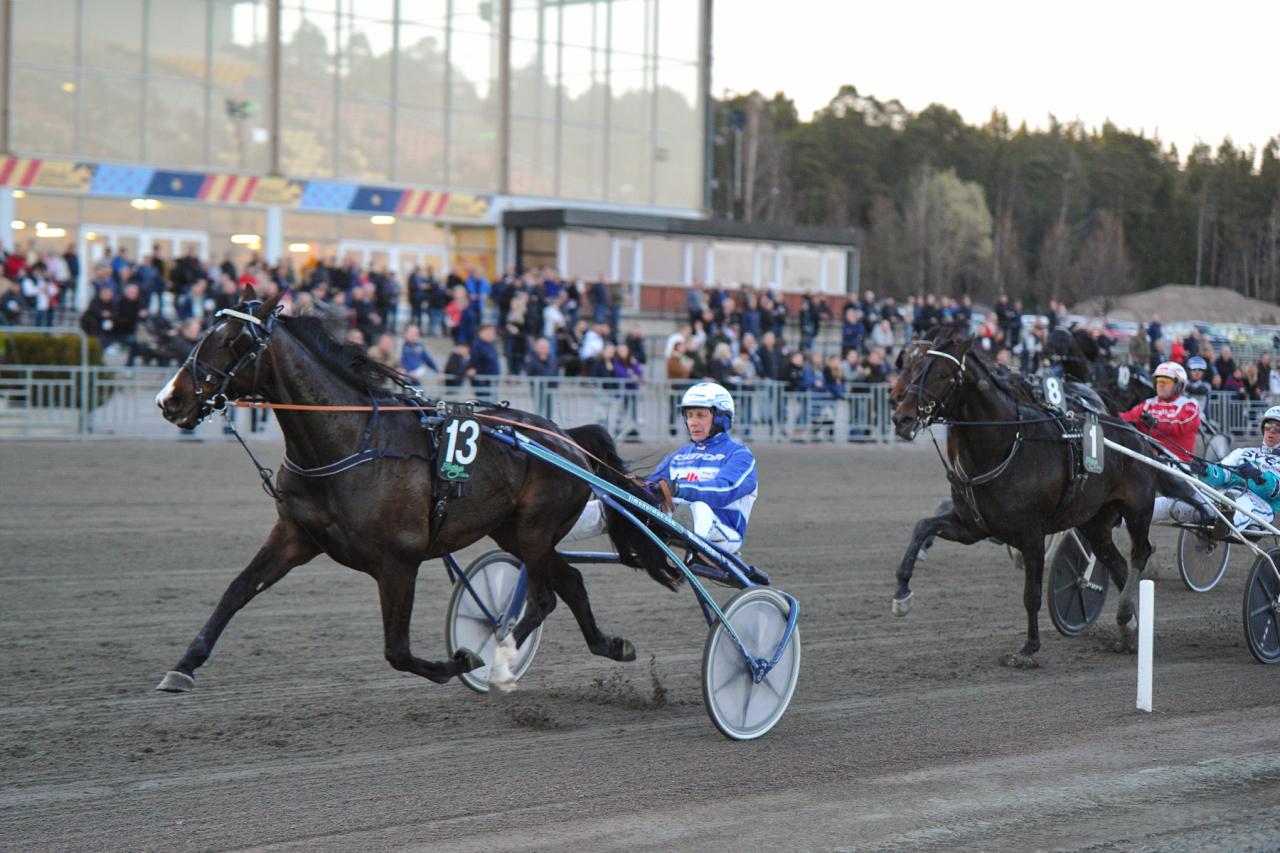 Magic Cash imponerade vid segern i stayerloppet i Gävle under skärtorsdagen. Foto Simon Hagen.