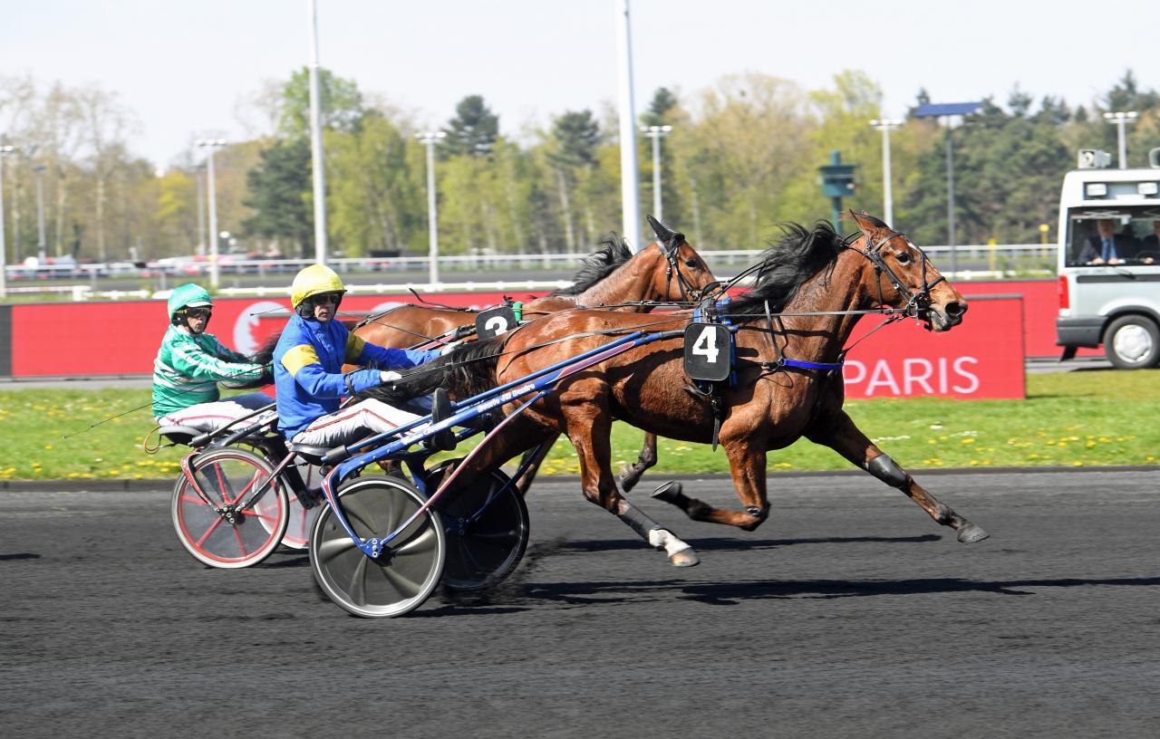 Galilea Money och Jean-Michel Bazire är obesegrade tillsammans i år efter tre starter. Foto: Gerard Forni