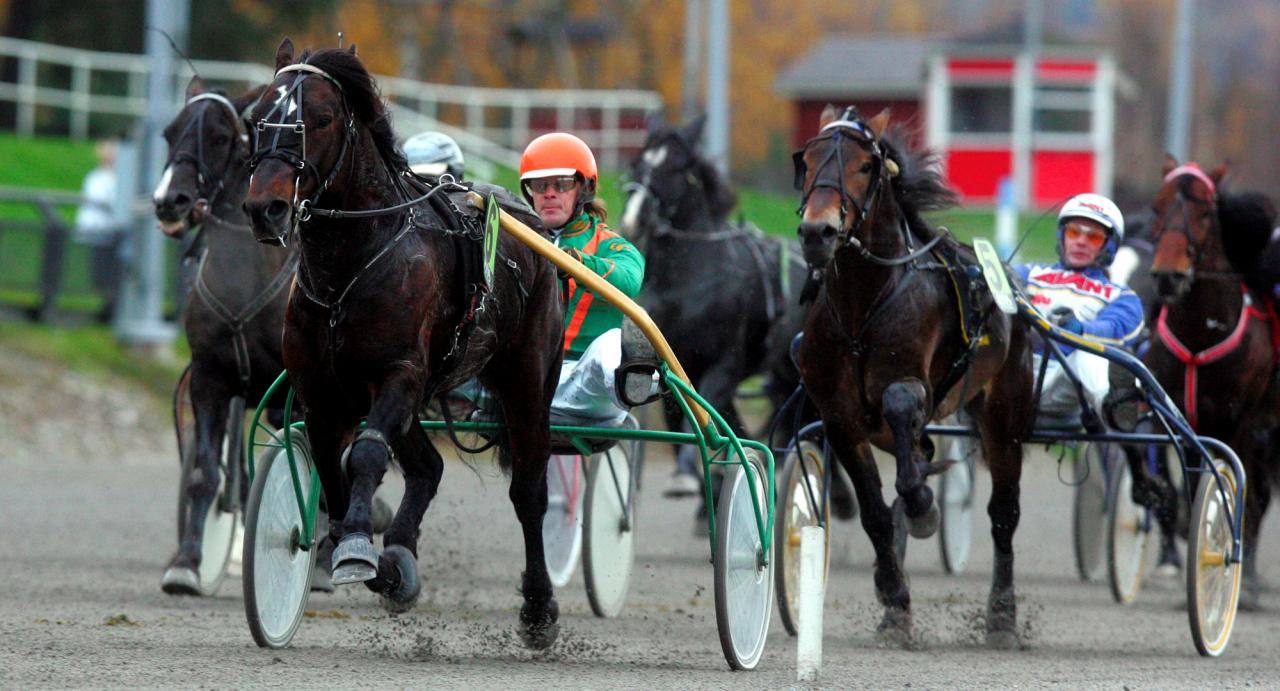 Raggmunken och Conny Gustafsson stormar fram mot segern i dubbelcupens final på Bergsåker 2012. I morgon gör han comeback på Åby. Foto Micke Gustafsson/ALN