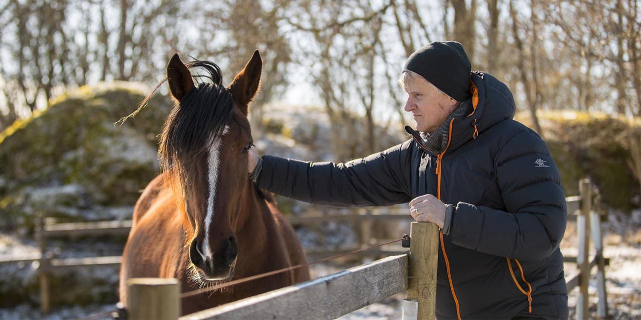 Spoil Me med Lennart Ågren en månad innan fölningen. Foto Mia Törnberg/Sulkysport