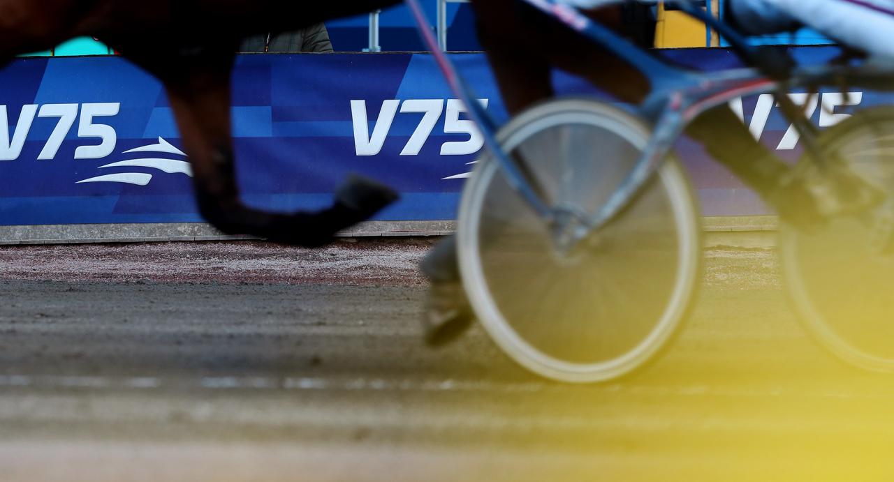 """När ska V75-loppen köras på lördagar? Nu har Travtränarnas Riksförbund ett """"skarpt"""" förslag om att V75-1 ska gå 15:00 och V75-7 före 18:00. Foto: Mia Törnberg/Sulkysport"""