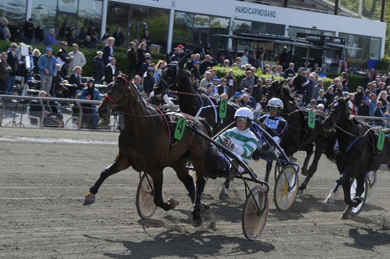 Fjolårets tyske Derbyvinnare Mister F Daags årsdebut var imponerande. Foto Adam Ström/Stalltz.se