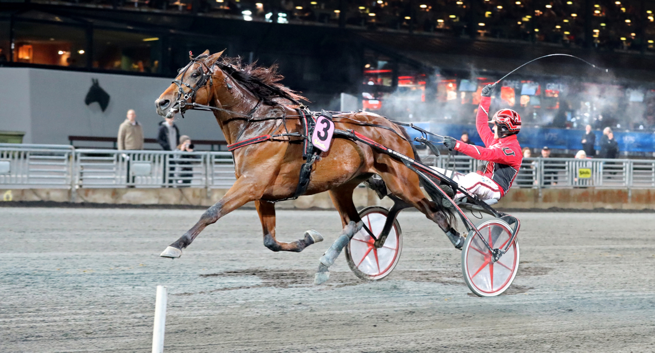 Får Johan Untersteiner göra segergest bakom Cyber Lane även på söndag i Copenhagen Cup? Foto Mia Törnberg