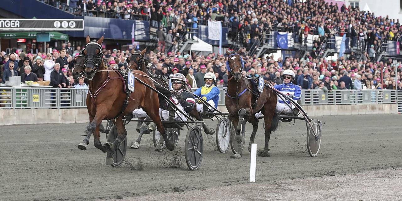 Dante Boko övertygade vid seger i sitt Sweden Cup-försök ihop med tränaren Adrian Kolgjini. Foto Mia Törnberg/Sulkysport