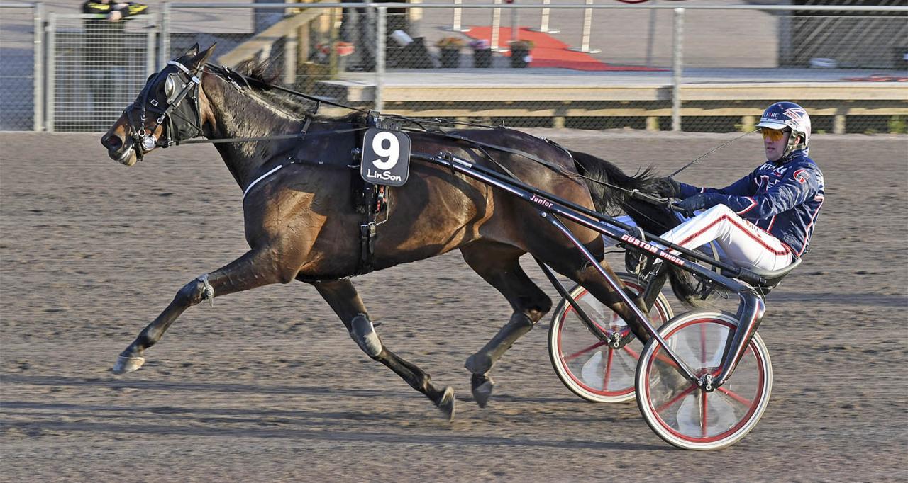Hillary B.R. vann på 1.09,9 i sitt uttagningslopp till Jarlsberg Grand Prixs stoavdelning. Foto Lars B Persson