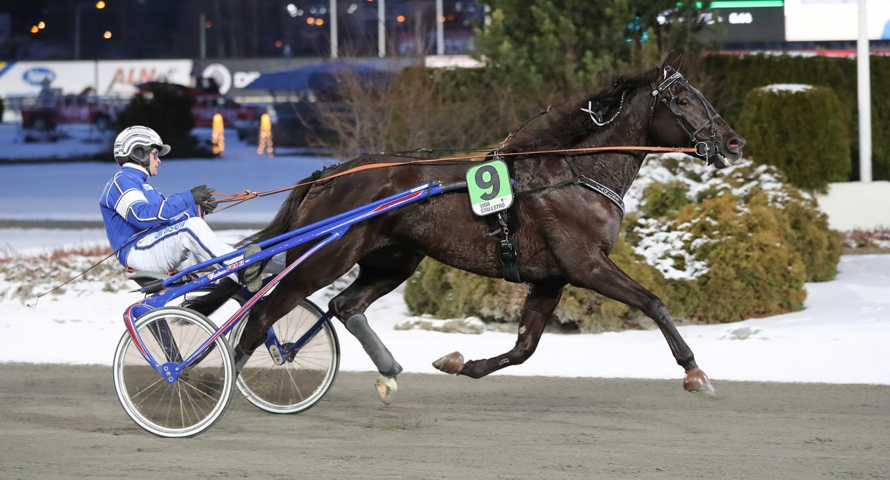 trav, travsport, sulkysport, solvalla, v75, mantorp
