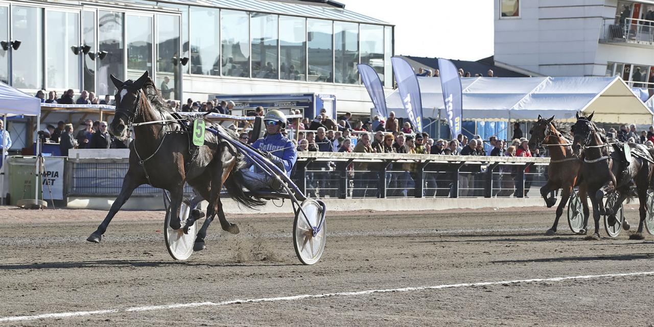 Lesperanza vann silverdivisionen i lag med Björn Goop. Foto: Mia Törnberg/Sulkysport