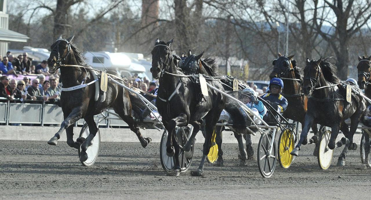 Petri Salmela-tränade Makethemark fångade in Sorbet när han vann i årsdebuten på Romme. Nu är hästen klar för Elitloppet. Foto Simon Hagen