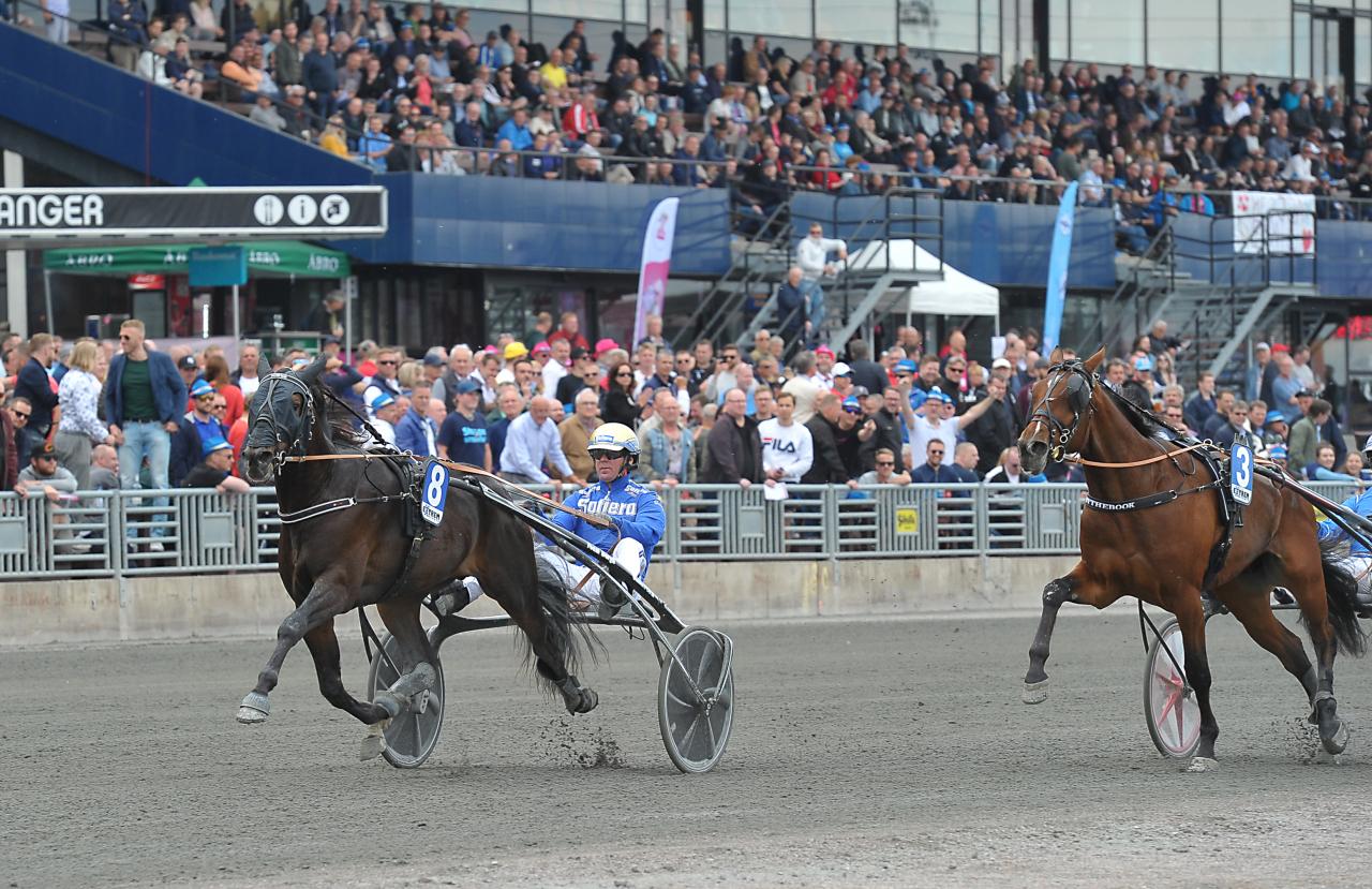 Robert Bergh-tränade Power vann ASVT:s Auktionslopp ihop med Björn Goop. Foto: Simon Hagen/Sulkysport