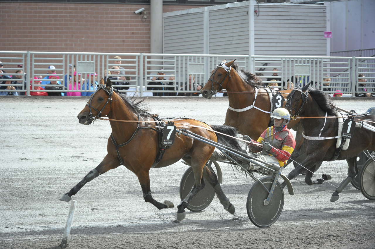 Readly Express och Björn Goop bytte mardrömsläge till drömposition på 500 meter. Foto Mia Törnberg