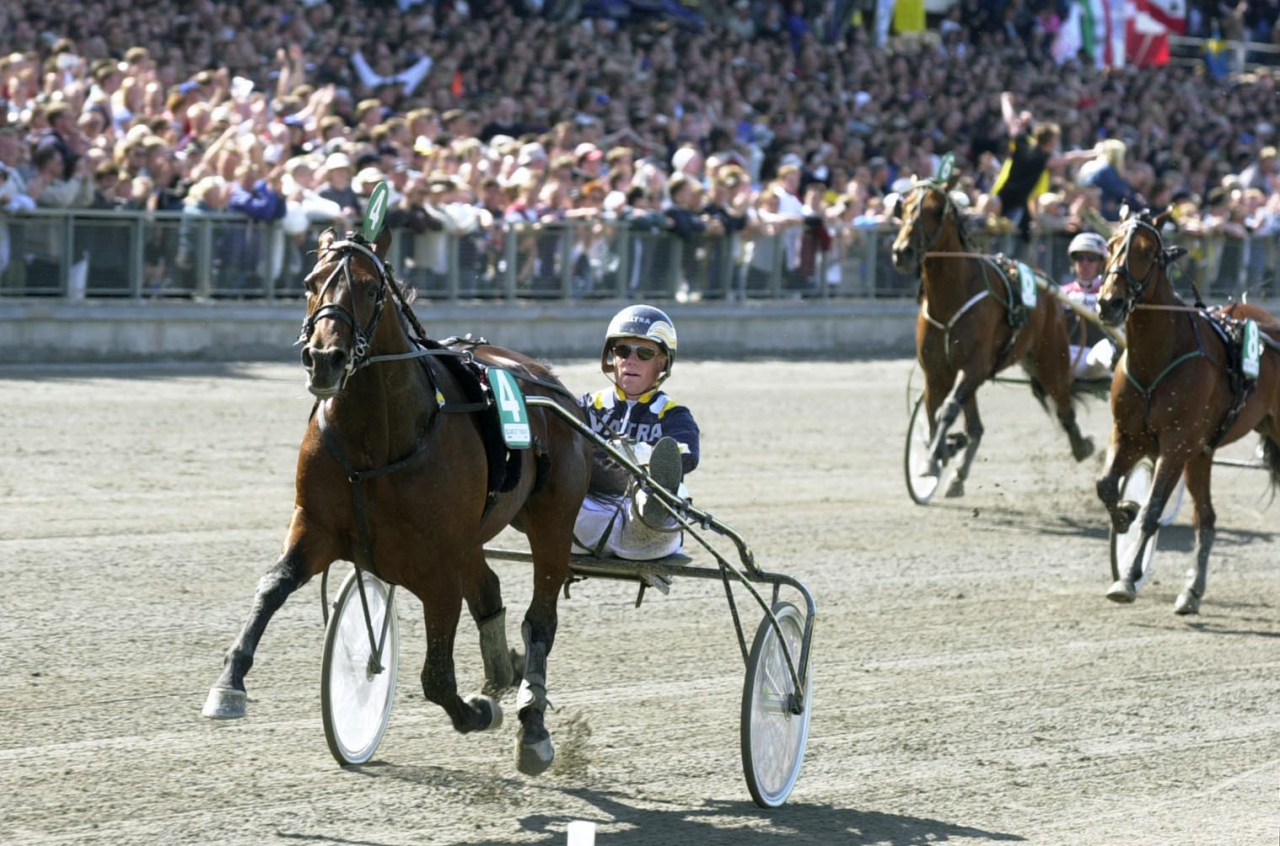 Scarlet Knight var den ende fyrbenta som tog plats i Hall of Fame i år. Foto: stalltz.se