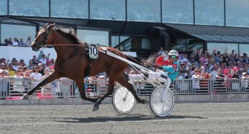 trav, travsport, sulkysport, v75, solvalla, elitloppet