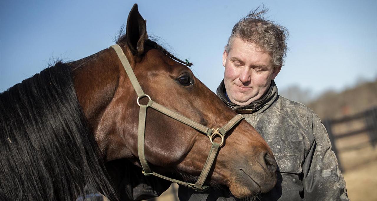 Ulf Stenströmer får pyssla om Handsome Brad hemmavid de närmsta månaderna. Foto Mia Törnberg/Sulkysport
