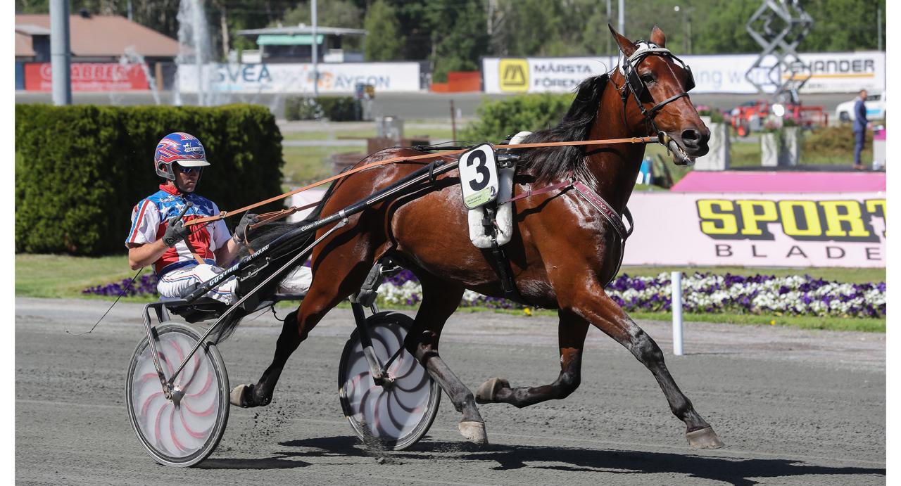 Whisky Akema med sin tränare Claes Svensson. Foto Jeannie Karlsson/Sulkysport