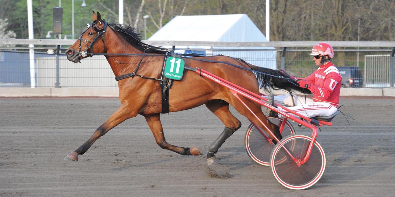 Adde S.H. och Peter Untersteiner. Halmstadtränaren har vunnit flest lopp hittills i år i Vaggeryd och totalt har han 13 kuskchampionat på banan. Foto Simon Hagen