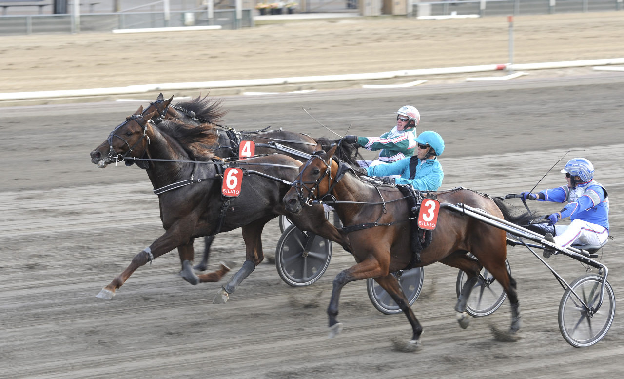 Betting Gangster (mitten) och Stefan Persson vid seger i årsdebuten ikväll på Jägersro. Foto Jörgen Tufvesson/ALN