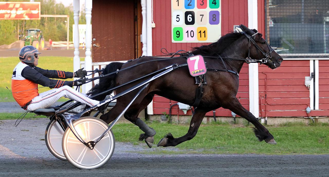 Guli Björn och Ove A Lindqvist vid segern senast. Foto Carina Olofsson/Carinas fotosida