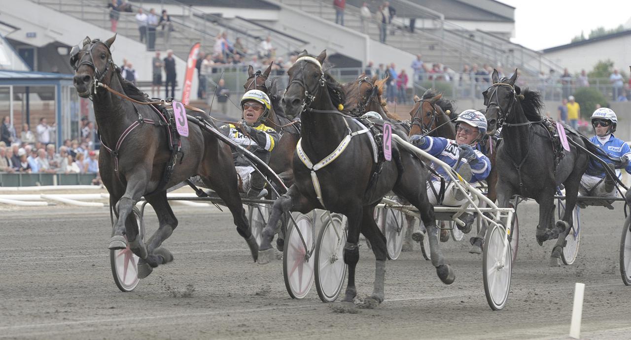 Svante Båth-tränade Poochais största seger kom med Örjan Kihlström i Svenskt Travderby 2014, där Ivar Sånna plockades ned sista biten. Foto Leif Norberg ALN