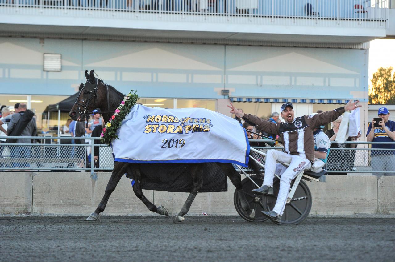 Propulsion är en av 13 hästar som kvarstår i finalen i European Trotting Masters på Vincennes. Foto: Simon Hagen/Sulkysport