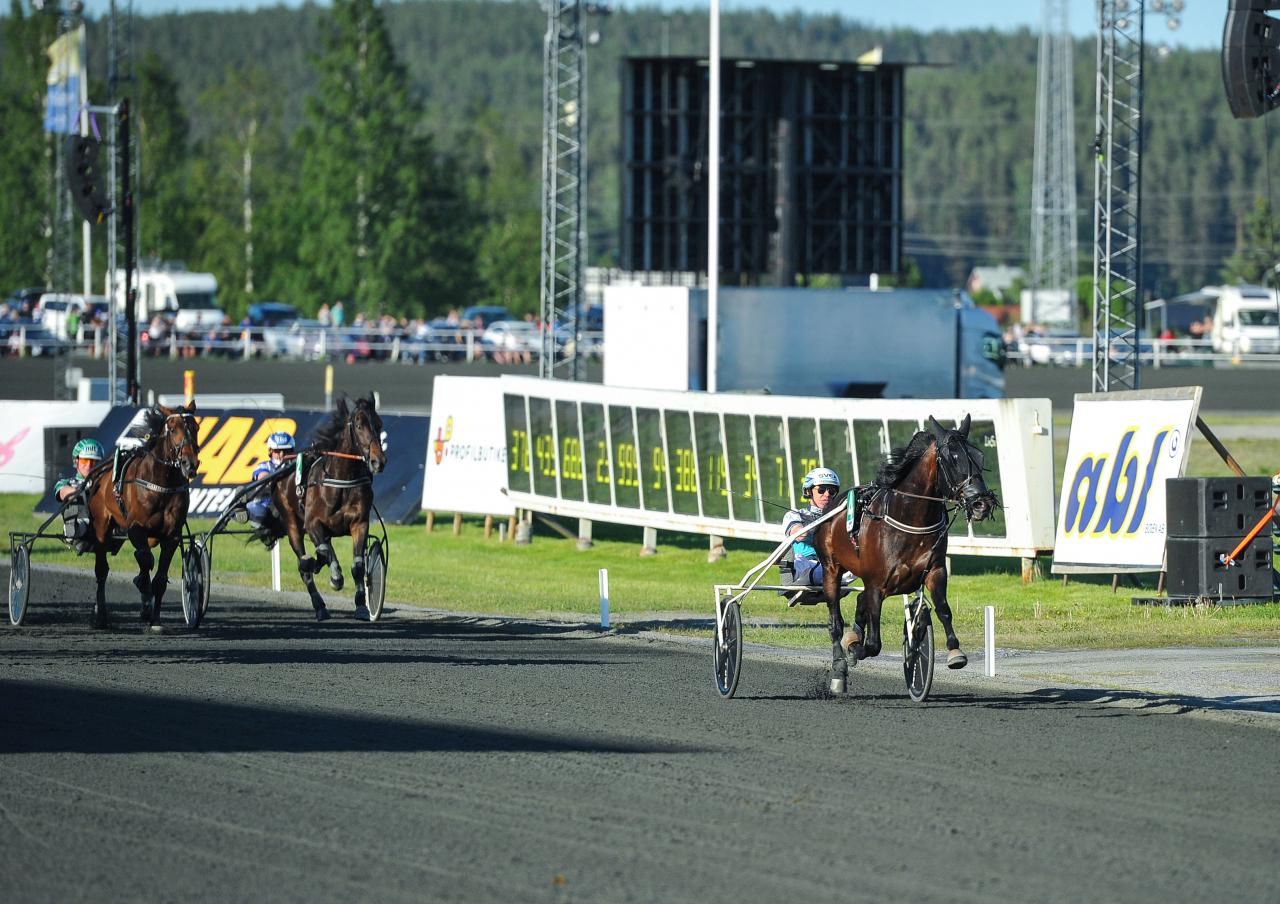 Zephyr Kronos vann lätt för Örjan Kihlström och nu kan tränaren Daniel Redén ta ny sats mot storloppen med den fyraårige Ready Cash-sonben. Foto: Simon Hagen/Sulkysport