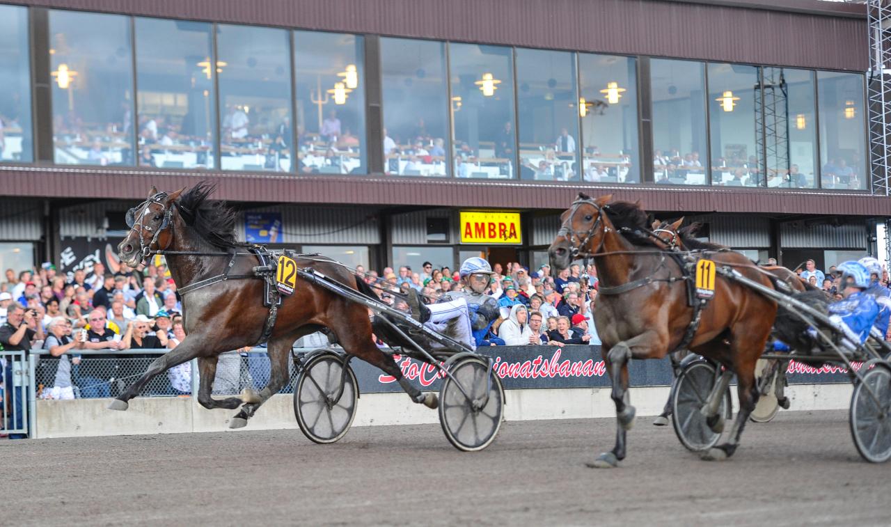 Activated, Carl Johan Jepson och Fredrik Wallin vann Stochampionatet. Foto: Simon Hagen/Sulkysport
