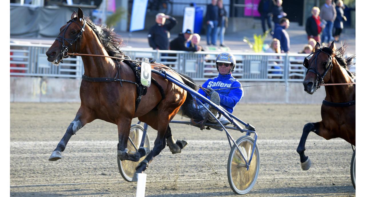 Ecurie D. och Björn Goop vid seger på Solvalla för ett par veckor sedan. Nu är hästen såld till svenska ägare. Foto Martin Langels/ALN