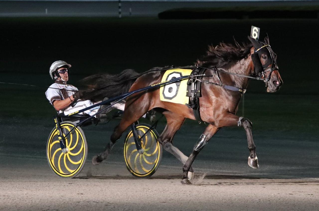 Marcus Melanders Hypnotic Am satte nytt banrekord på Yonkers Raceway i natt för Brian Sears. Foto: Mike Lizzi