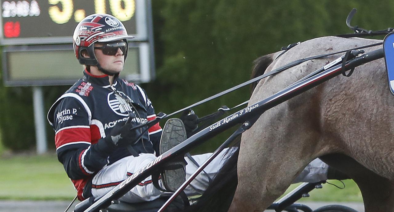 Martin P Djuse lämnar snart Sverige för Frankrike. Foto Jeannie Karlsson/Sulkysport