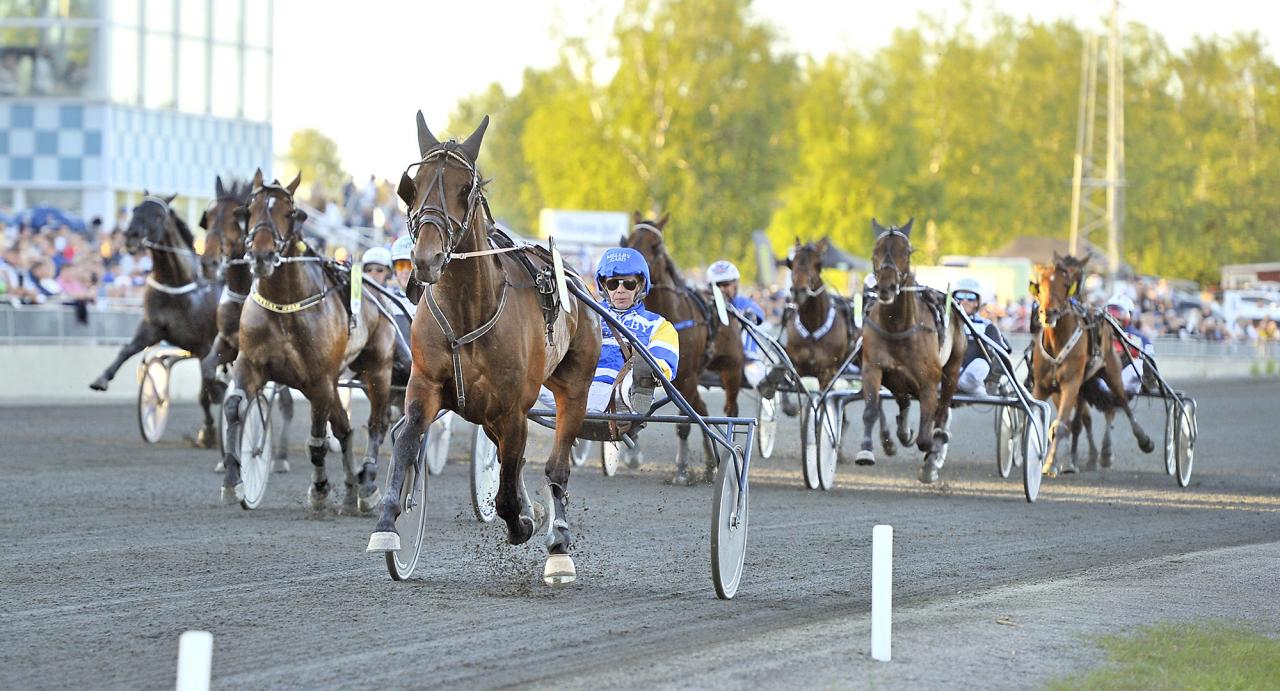 Mellby Club och Jorma Kontio vid segern under Bodens midnattstrav i mitten av juni. Foto Simon Hagen/Sulkysport