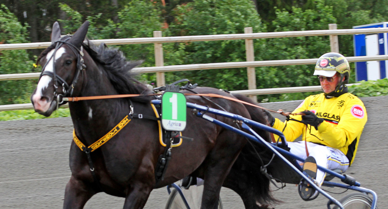 Svenskägde Nordsjö Odin tillsammans med sin tränare Öystein Tjomsland. Foto Tom Jönehag/Finish