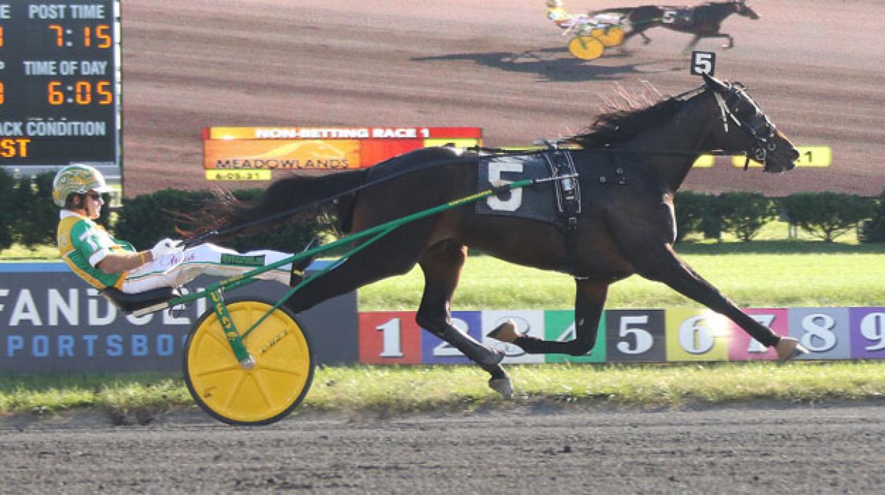 Play Trix On Me är obesegrad efter tre starter och i natt vann han finalen i New Jersey Sire Stakes för Tim Tetrick. Foto: Lisa Photo