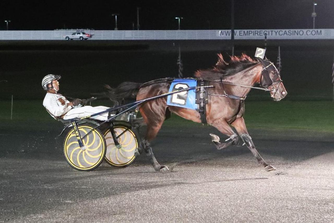 Hypnotic Am fortsätter att rada upp vinster och i natt vann hon på nytt på Yonkers Raceway. Foto: Mike Lizzi
