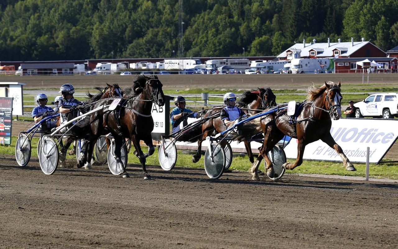 Magnus A Djuse måttade in Lukas Rauen till seger i V75 på Hagmyren i slutet av juli. Det var lärlingens femte V75-vinst 2019. Foto Hanold/ALN