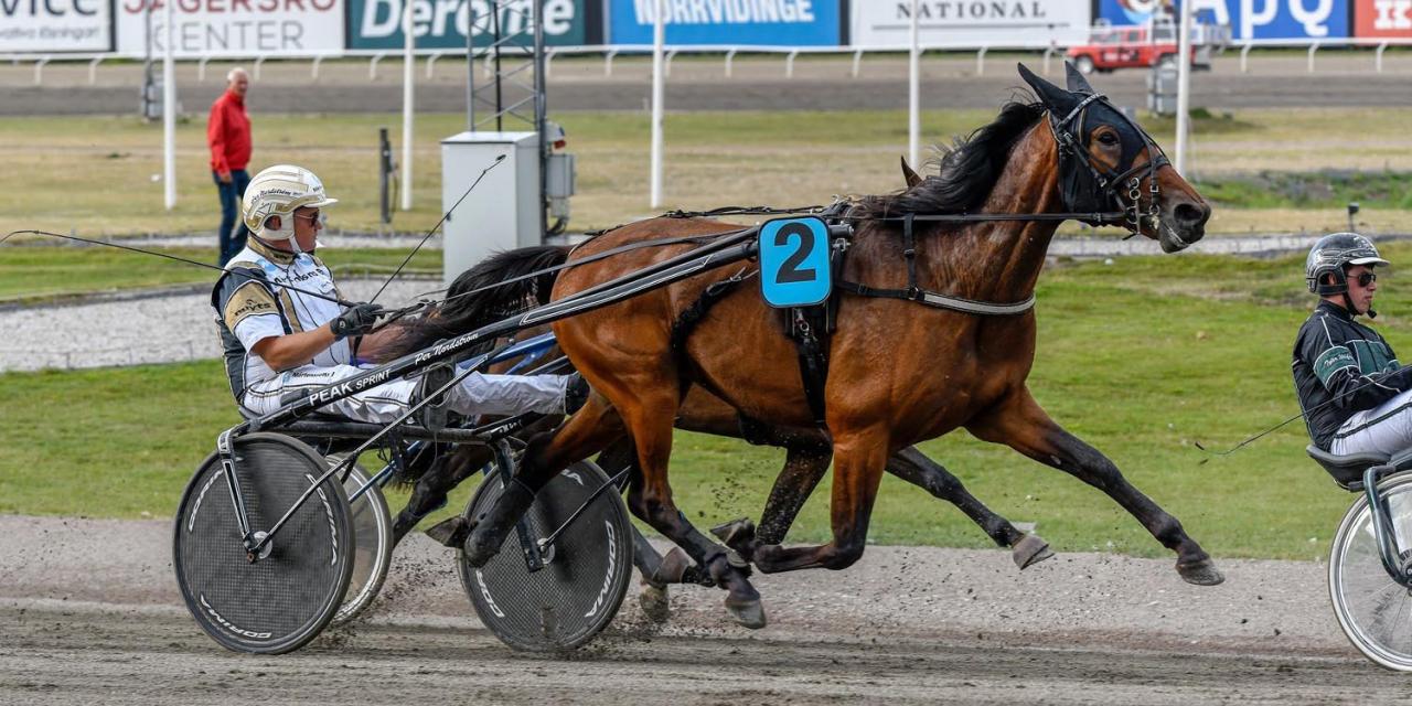 Readly Express-sonen Revelation kvalade för Per Nordström. Foto Fredrik Servin