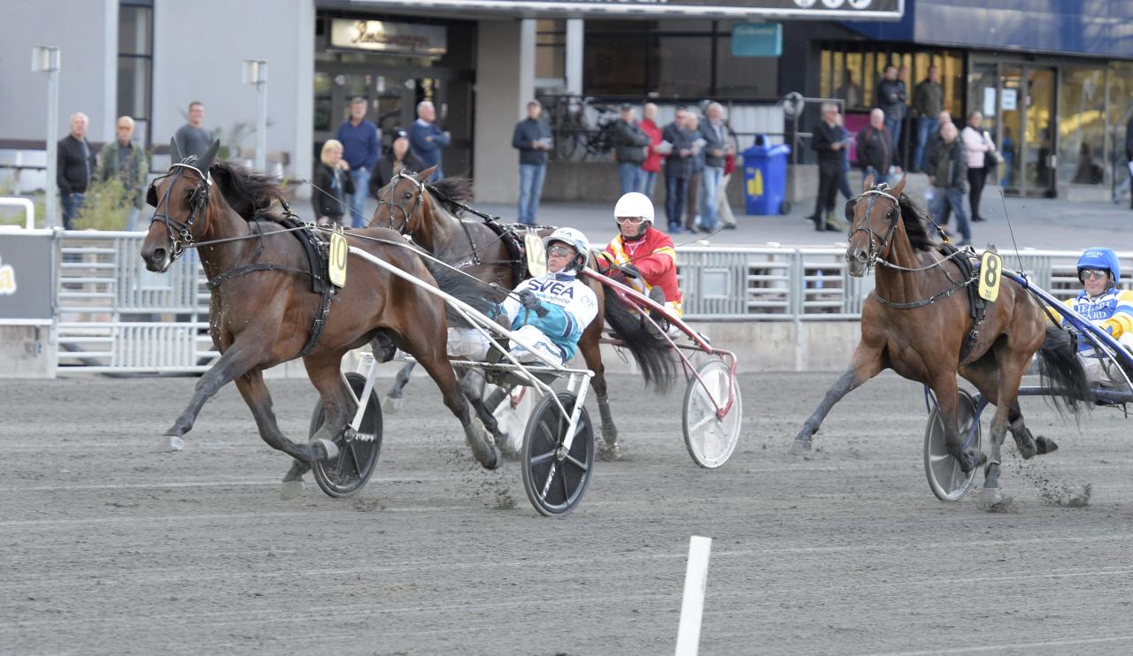 Alaska Kronos vinner förta uttagningen till Svenskt Trav-Oaks. Foto Leif Norberg/ALN