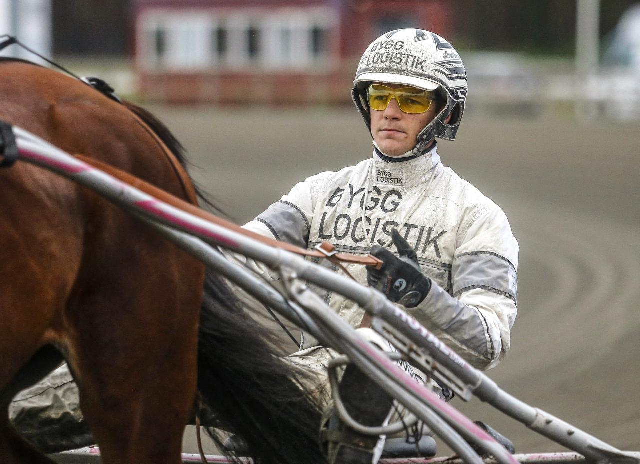 André Eklundh åker till Danmark för att köra egenägde Earl Grey i kval till Danskt Travkriterium. Foto: Hanold/ALN
