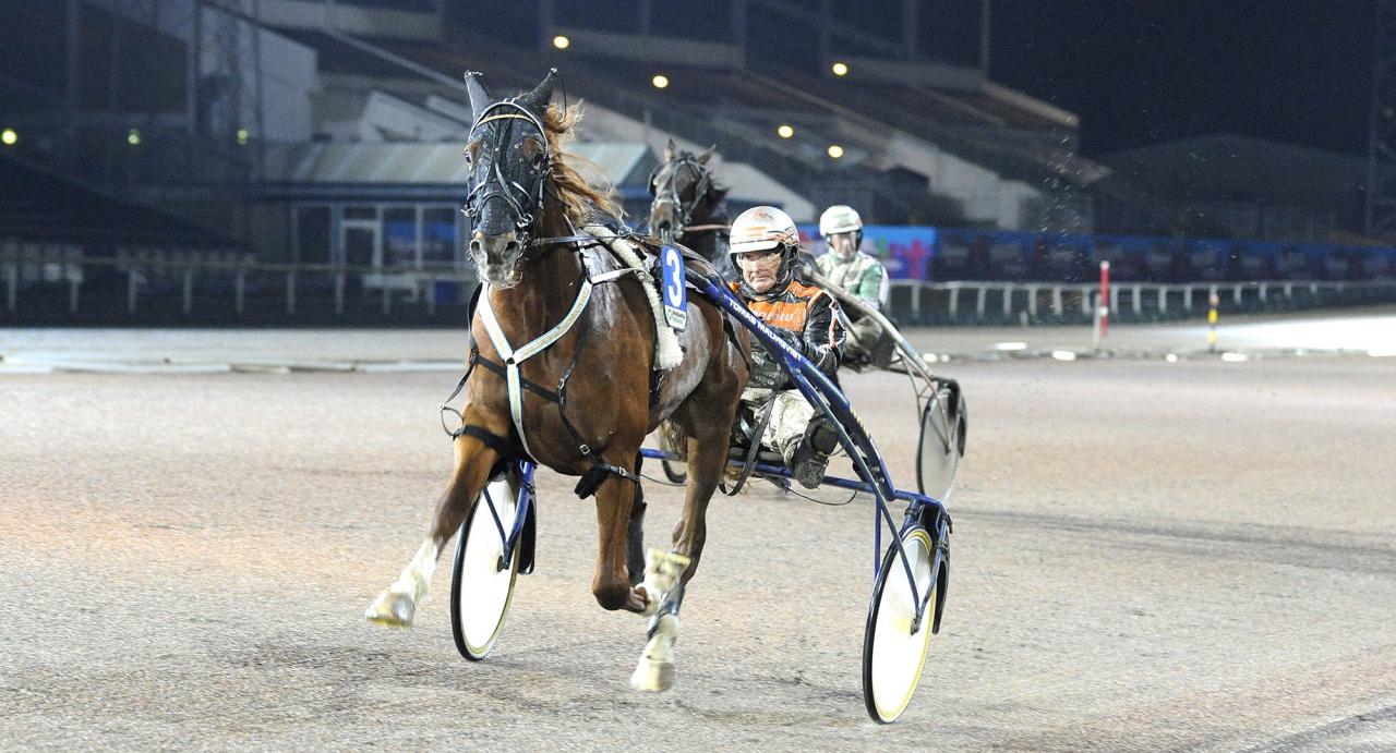 Tomas Malmqvist-tränade Empire vid en tidigare vinst. Idag vann han Kriteriekval i Danmark med åtta längder. Foto Jörgen Tufvesson/ALN