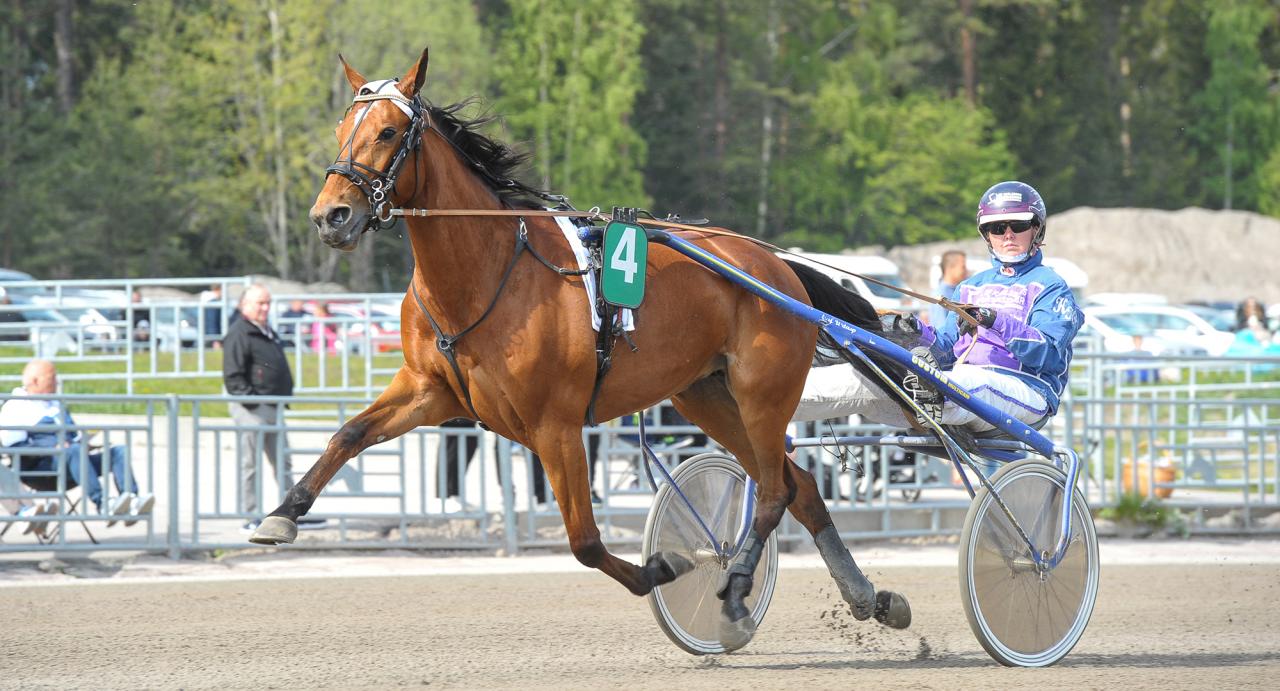 Flerfaldiga rikstotovinnaren Leka tillsammans med sin tränare Katrin K Frick. Foto Simon Hagen/Sulkysport