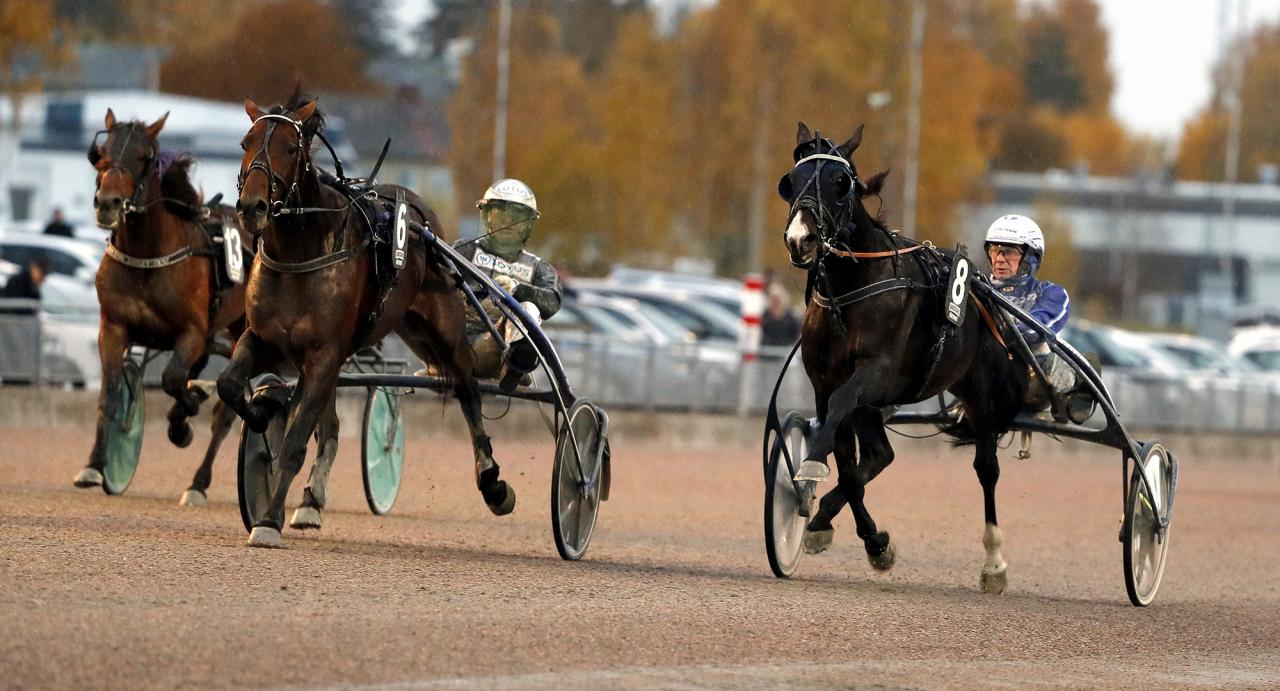 Magic Cash med Jorma Kontio vann Charlie Mills Race. Foto Micke Gustafsson/ALN