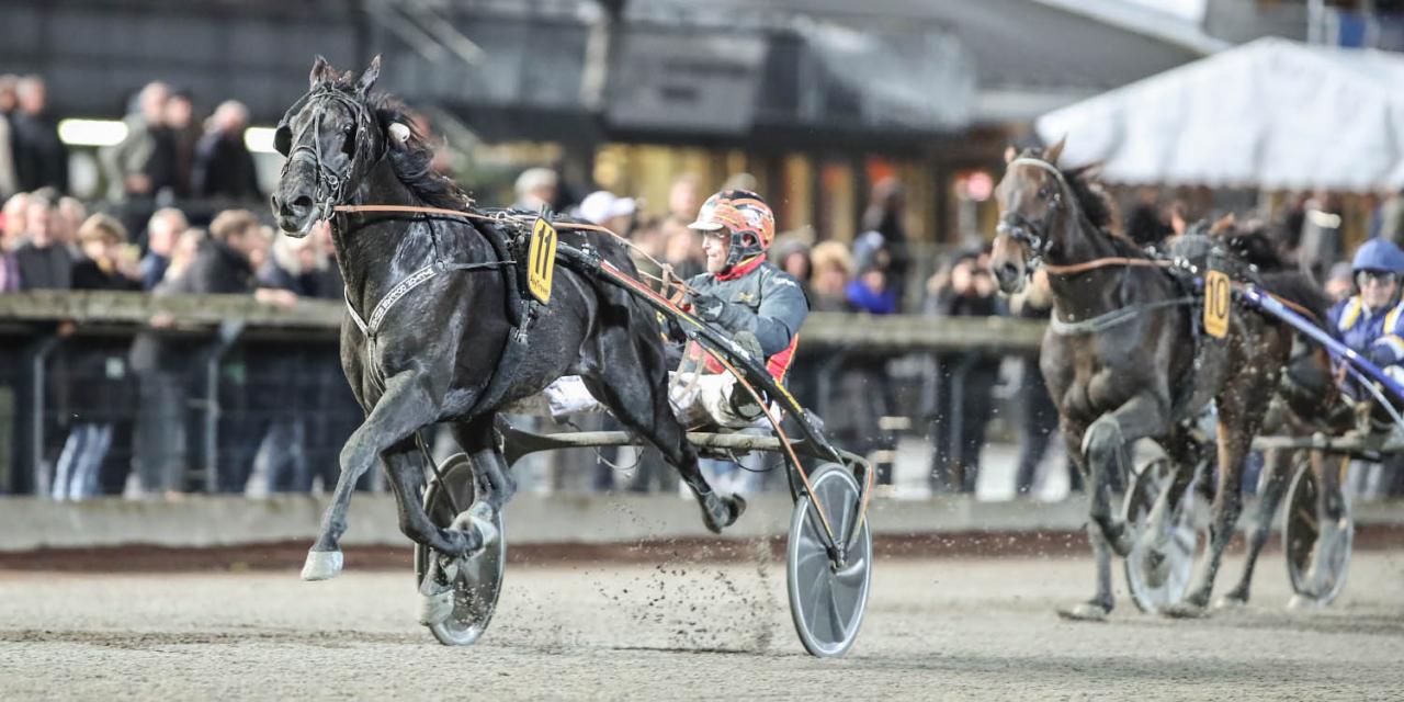 Milliondollarrhyme vann SM på Åby. Foto Mia Törnberg/Sulkysport