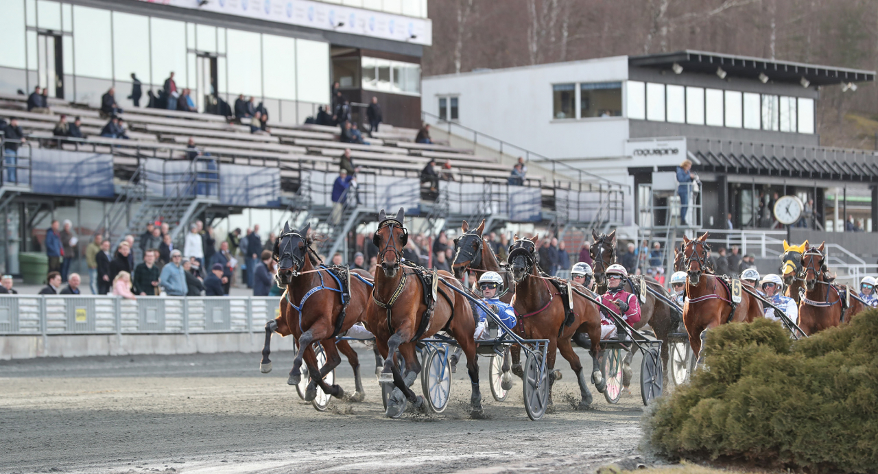 Solvalla byter tävlingsdag för Kriteriet och kommer även att ta bort tisdagen som huvudtävlingsdag under 2020. Foto Jeannie Karlsson