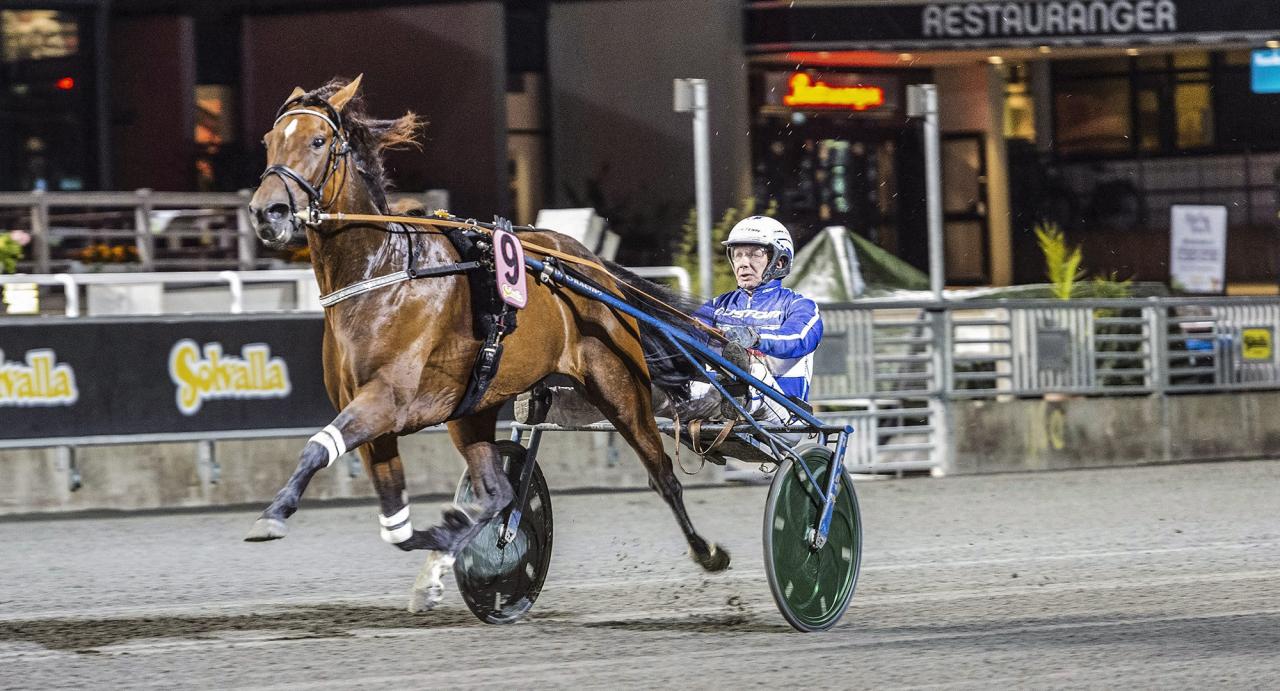 Timo Nurmos vassa italienska Une Etoile Gar är tillbaka på Solvalla på tisdag efter segern i Giant Diablos lopp under Kriteriehelgen. Foto Tommy Andersson/ALN